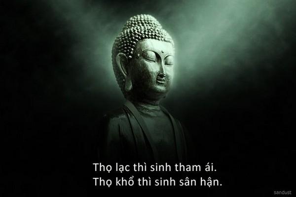 khong dam nhiem thi song vui 6098206020e3d