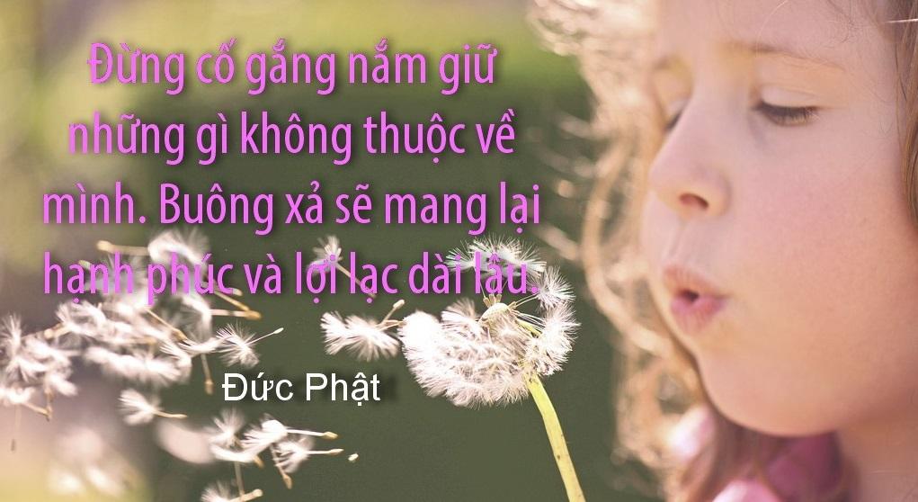 loi phat day song vi tha la mot trong nhung phep tac dao duc cao quy nhat 609813f351028